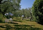 hotel-pensione-lago-di-garda-parco-10.jpg