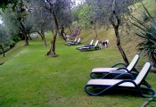 hotel-pensione-lago-di-garda-parco-6.jpg